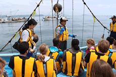 海から学ぶプログラム