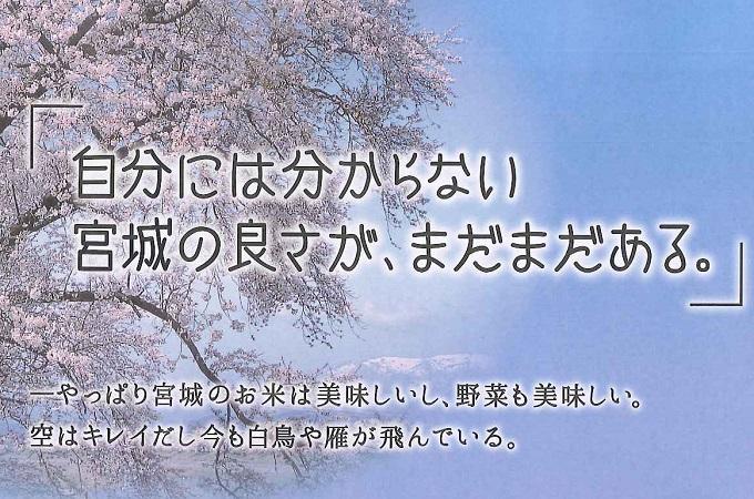 ウェルカムみやぎ観光ガイドブック'14配布開始!