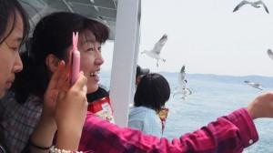 観光船 イチオシ (4)