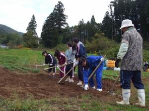 民泊家庭で農作業のお手伝い