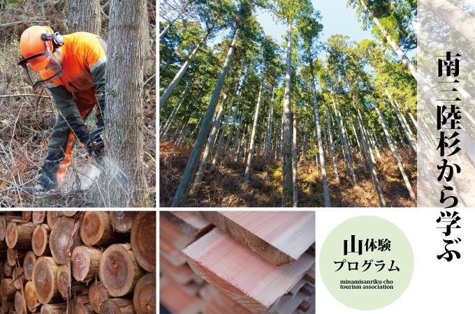森をつくる仕事を学ぶ(林業体験プログラム)