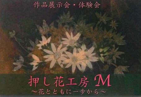 11月1日-3日押し花作品展開催
