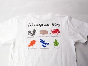 志津川湾-海の生き物Tシャツ