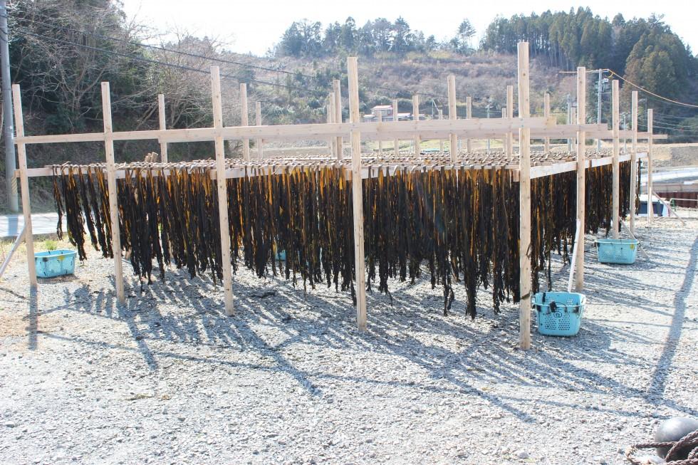 【戸倉】わかめの驚くべき栄養価!南三陸産の手作り天日干しわかめ