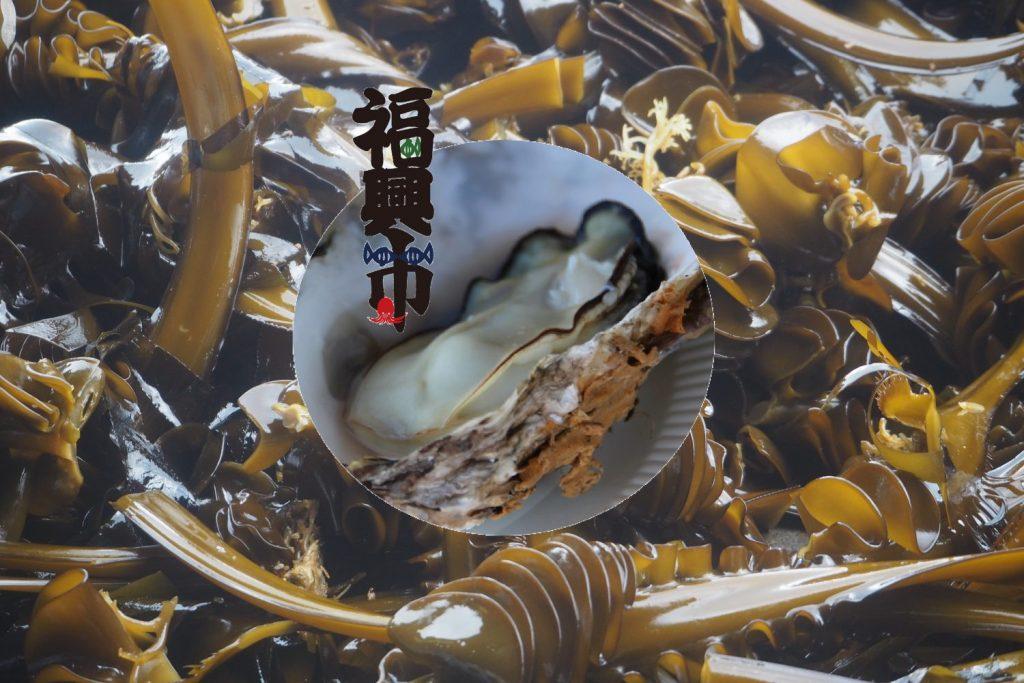 第77回 志津川湾牡蠣・わかめまつり福興市