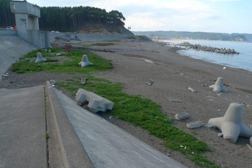 海辺のセミナー〜7年目のいまだから、私たちの海辺を考えたい〜