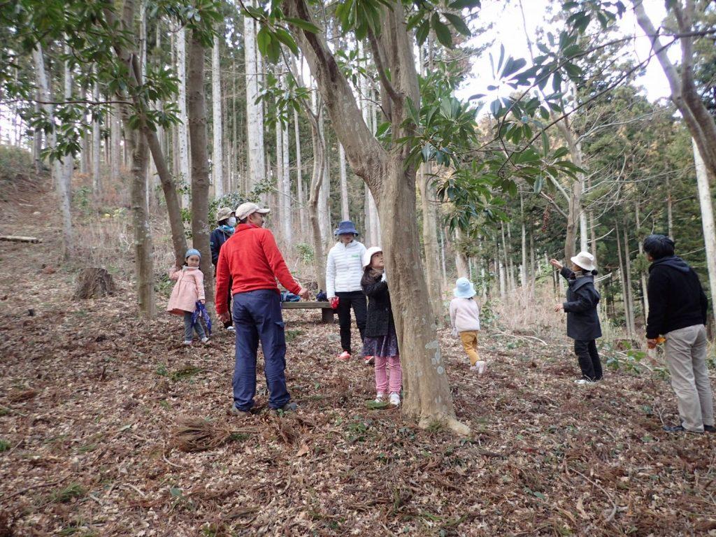 森はともだちプログラム 神割崎の小さな森で、初めてのネイチャーゲーム