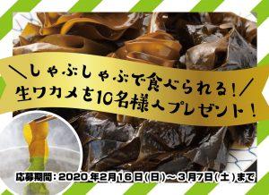 旬を迎える南三陸産生ワカメをプレゼント?!
