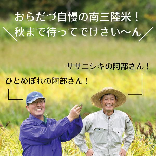 【未来の宅配便】地域の愛情たっぷりに育てられた 新米食べ比べセット 販売開始